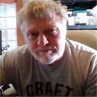 David B Watson's profile image