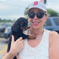 Liz Hahn's profile image