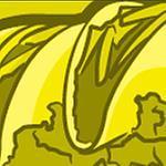 kingdumb's profile image