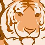 CsernakAdam's profile image