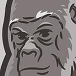 maface's profile image