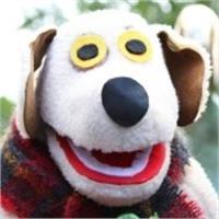 Pat Cousins's profile image