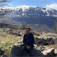 Tony Shepherd's profile image