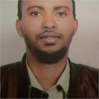 Dagne Bacha's profile image