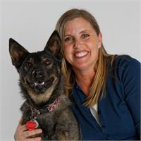 Kim Domerofski's profile image