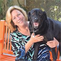 Gina Knepp's profile image